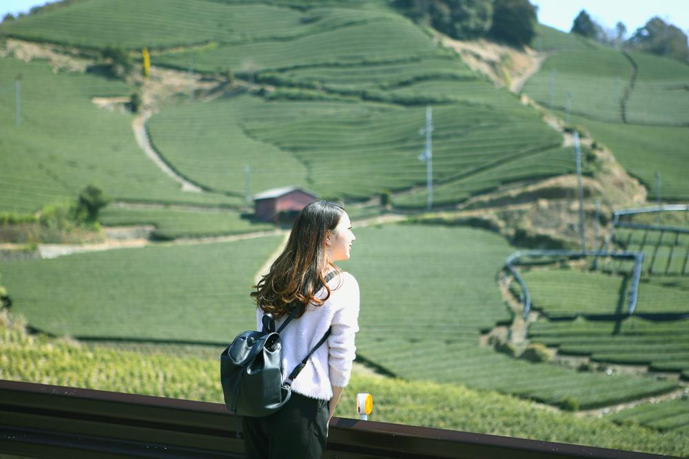 【旅レポ】どこまでも続く緑の波文様!茶畑トレイルをゆく 【旅レポ】どこまでも続く緑の波文様!茶畑トレイルをゆく