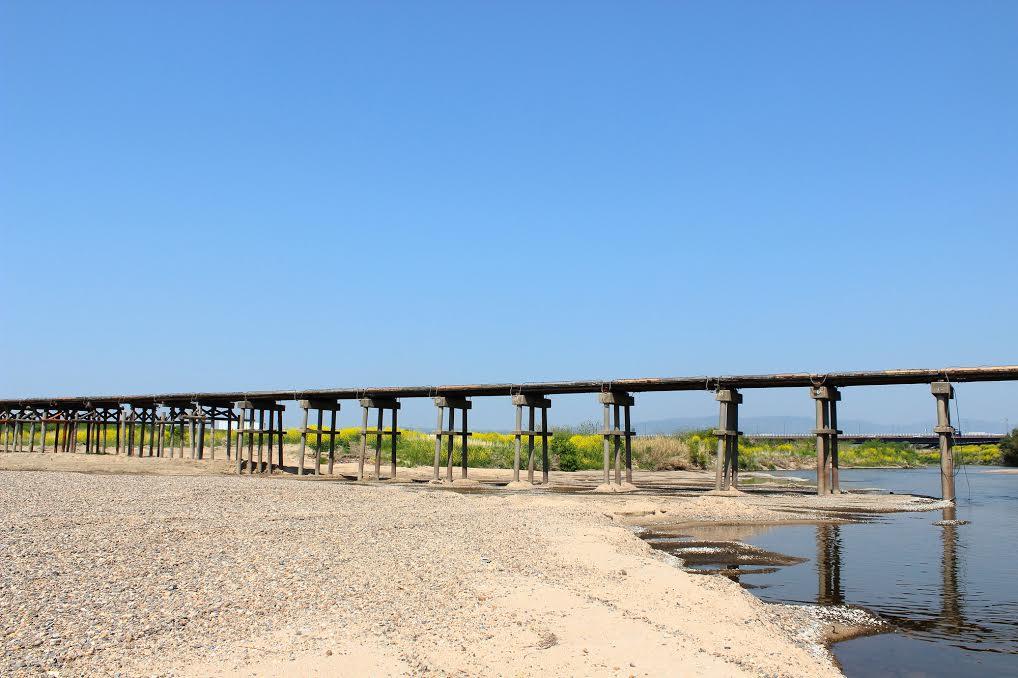 木津川のフォトスポットへ。