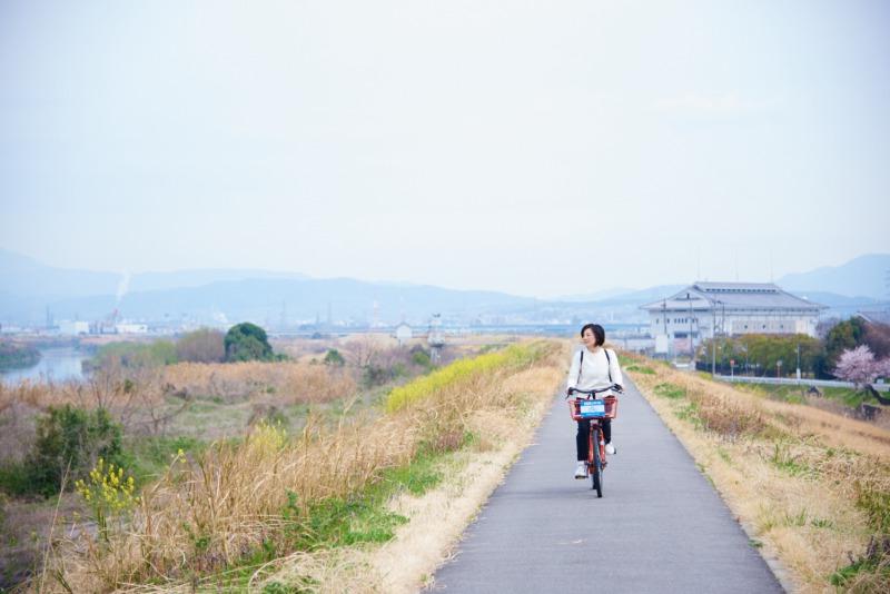 サイクリング コース 景色