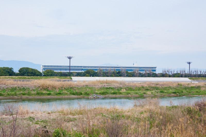 久御山排水機場辺りの宇治川沿い