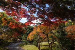 松花堂庭園:秋2