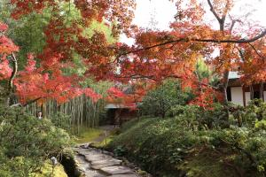 松花堂庭園:秋4