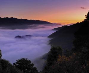 笠置町:雲海