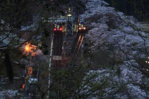 笠置駅と桜